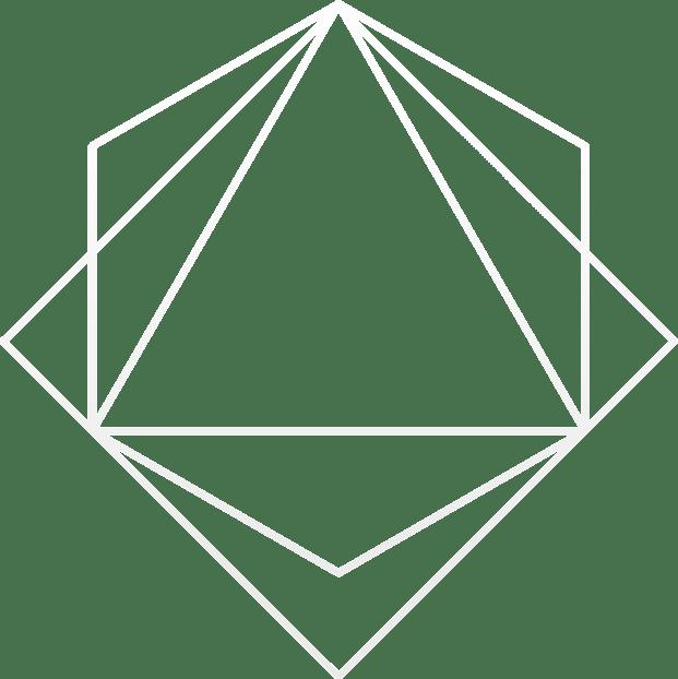 bspkn-icon-white_transparent